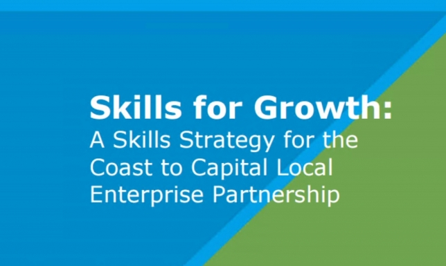 Skills Strategy