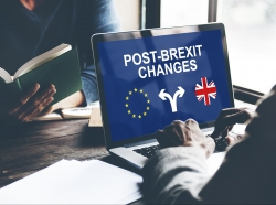 How our Growth Hub has helped businesses get through the challenges of adapting to the new realities of EU exit