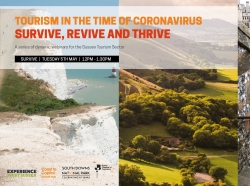 Survive, Revive, Thrive - Help for the Sussex Tourism sector
